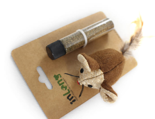Refillable Plush Mouse with Catnip Toy Set