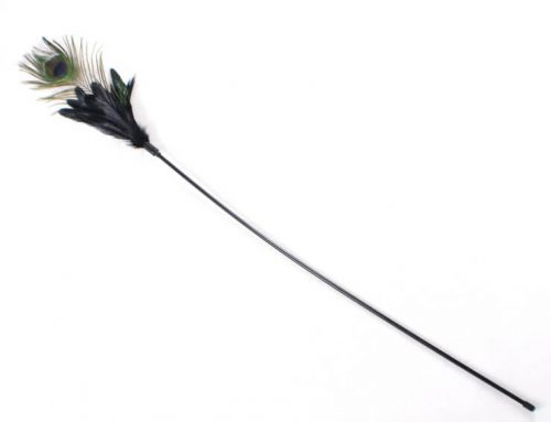 Long Stick Peacock Feather Cat Toy